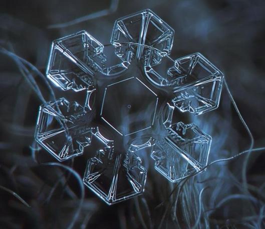 macro-photography-snowflakes-alexey-kljatov-1