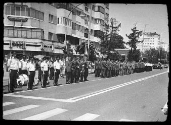 Medical officers - Bacau Romania